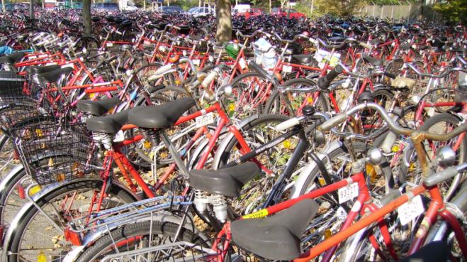 BADF bikes